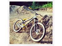 "Scott 24"" Jump bike (street/dirt)"