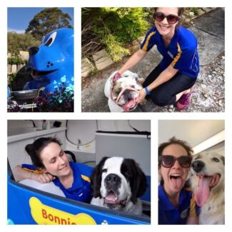 FOR SALE Mobile dog grooming business