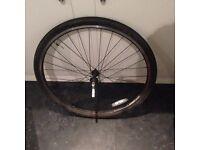 Mountain Bike wheel/Tyre set