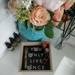 Home Decor YOLO Accessories / Vanity / Make Up / Jewellery Tray Villawood Bankstown Area Preview