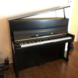 PIANO YOUNG CHANG    Y-116 Noir Satiné