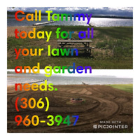 Tammy's Tilling and lawn maintenance