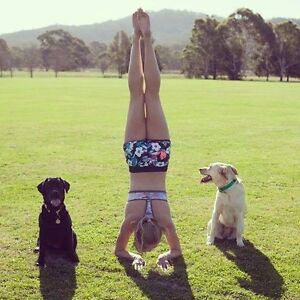 Qualified and Trustworthy Dog Walker and Runner Canberra Region Preview