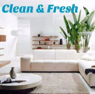 CARPET STEAM CLEANING FITZROY  $60 special Fitzroy Yarra Area Preview