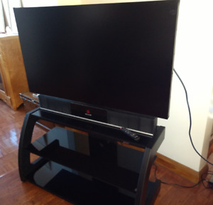 Samsung UD55E-A  Ultimate Gaming Monitor