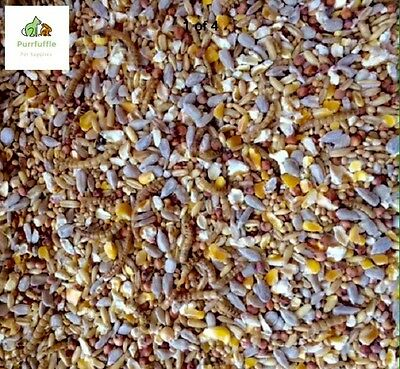 20kg ROBIN SONGBIRD WILD BIRD FOOD FEED SEED MIX WITH MEALWORMS ALL SEASONS