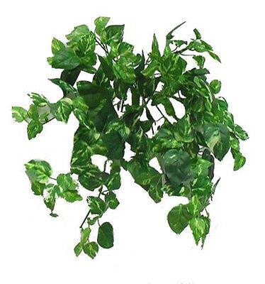 "Pothos Plant ~ 13"" Bush Mini Leaves Greenery Silk Wedding Flowers Centerpieces"