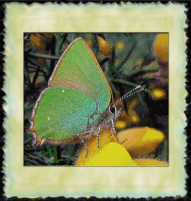 DELICATE GREEN BUTTERFLY~DELICA BEAD PEYOTE PATTERN