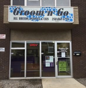 Grooming Shop for sale