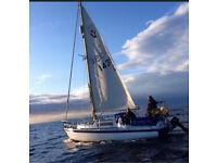 Albin vega sailboat sailing boat yacht