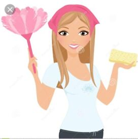 Self employed cleaner available