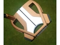 Brand New Taylormade Spider X Putter