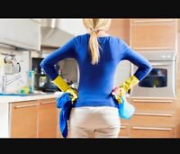 Experienced house cleaners wanted