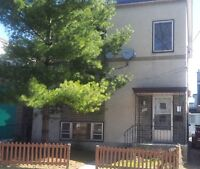 Newly Renovated - 2 Bedroom - Vanier - Great Value