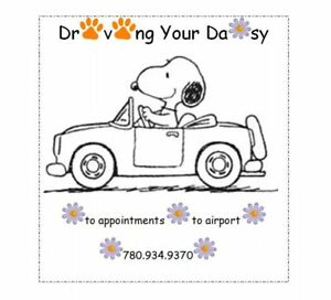 Driving Your Daisy