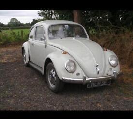 Vw Beetle 1967 Classic Car