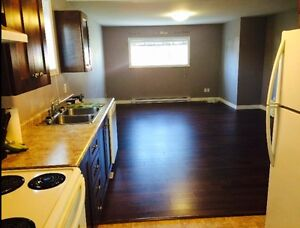 2 bedroom apt available August 1st