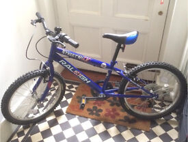Rayleigh Streetwolf Blue Children's Bike
