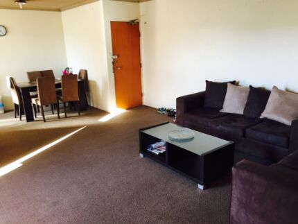 One room available for single vegetarian single female / single male Parramatta Parramatta Area Preview