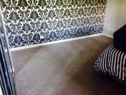 Free carpet pick up only - Petersham NSW Petersham Marrickville Area Preview
