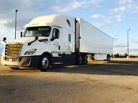 Hiring US Teams and Owner Operator for Dedicated Lanes