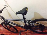 Carrera mountain bike selling for a cheap price