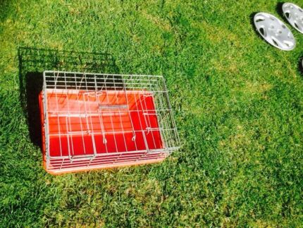 Cat cage top condition steel with plastic bottom  Edgeworth Lake Macquarie Area Preview