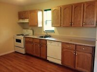 2 Bedroom Unit-Downtown-No Damage Deposit Required