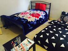 Shared accommodation available at WestMead. shor stroll 2 station Westmead Parramatta Area Preview