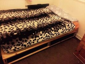 Double Bed with orthopedic Mattress for quick Sale!