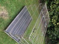 xx large dog cage 48 inches long has 2 doors all folds down flat in vgc