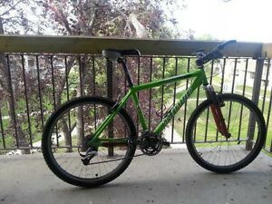 26 inch customized mountain bike