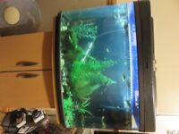 64 litre fish tank full tropical set up matching stand/cupboard&all the contents as seen in tank pic