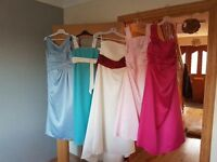Various Bridsmaid dresses all different sizes and makes