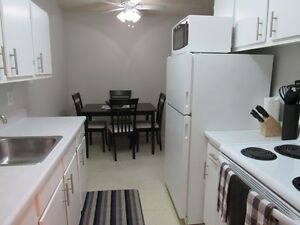 All Inclusive - Fully Furnished 1 Bedroom Suite