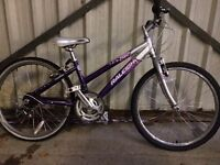 "SERVICED RALEIGH GIRLS 24"" BIKE FREE DELIVERY TO OXFORD!"