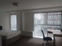 Lovely 1 bedroom student flat at 36 The kingsway