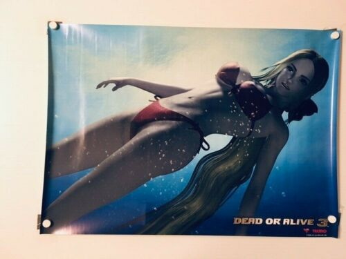 【Roll Type】DEAD OR ALIVE 3 ;SEGA B2 size Original Poster
