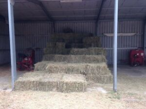 Small square hay bales for sale Pakenham Cardinia Area Preview