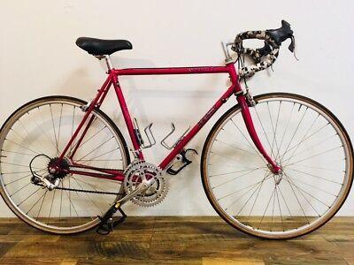 33983645da3 Georgena Terry Vintage Racing Road Bike ~ 55 cm frame ~ Full Campagnolo