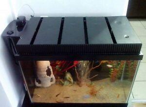 Aquarium toute équipée