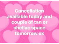 SPRAY TANS AND SHELLAC NAILS. Festival deals