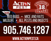 38 Years experience in Pest Control fully guaranteed gone