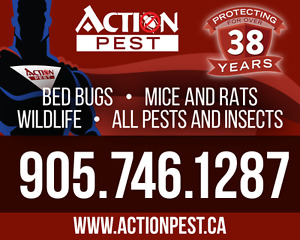 Pest Control, removal of wildlife, bedbugs,roaches, mice, rats