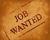 Highly Skilled Administrative Receptionist seeking Employment