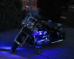 Customized Softail Deluxe with Doggy Side-Saddle