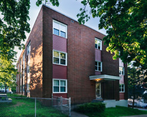 BRIGHT & SPACIOUS 1 BR APT STEPS FROM HFX SHIPYARD & HYDROSTONE