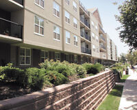 1 MONTH FREE, LARGE APARTMENTS, 2 BATH - IN SOUTH END