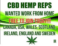 Looking for CBD reps