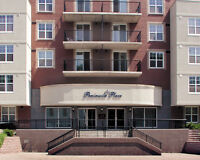 1 MONTH FREE, GREAT NEW APARTMENTS , 5 APPLIANCES, SOUTH END